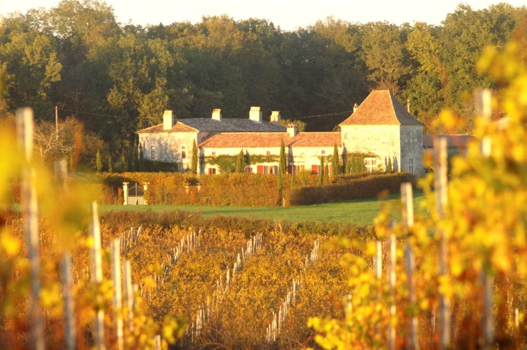 chateau with vines