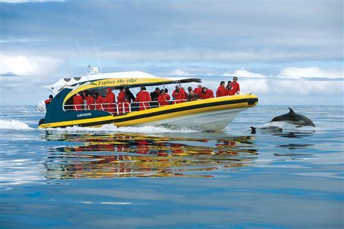 Pennicott boat