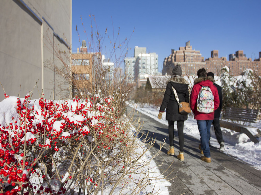 Snow Day January - Photo by Friends of the High Line_4-resized