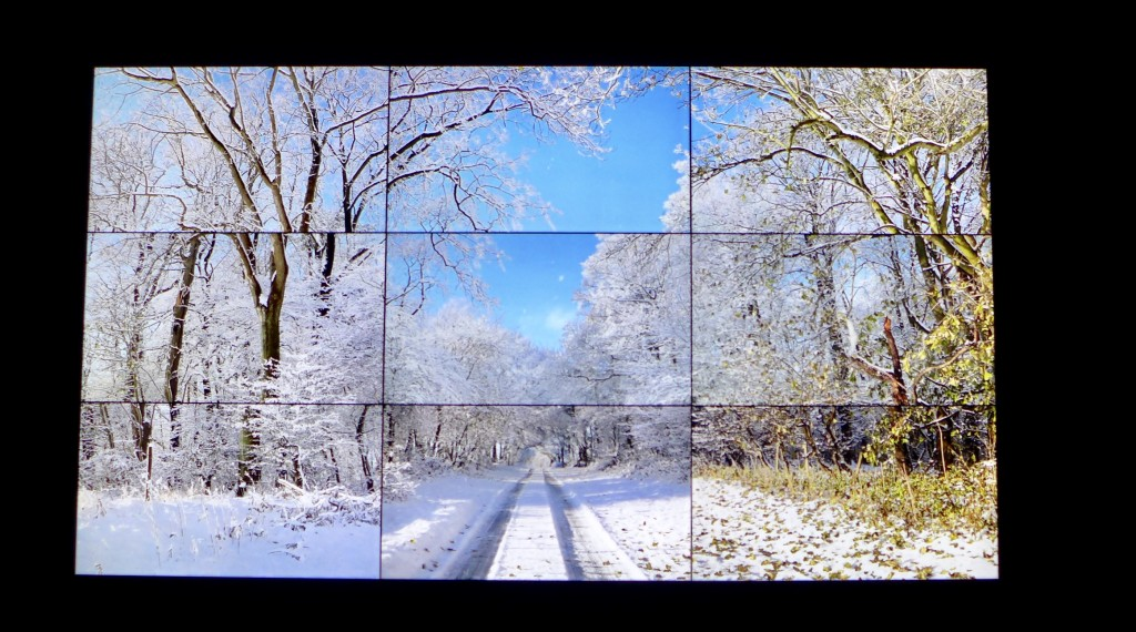 Video work of Woldgate Woods Winter 2010 comprising 9 high definition screens  Photograph:  GRACIE