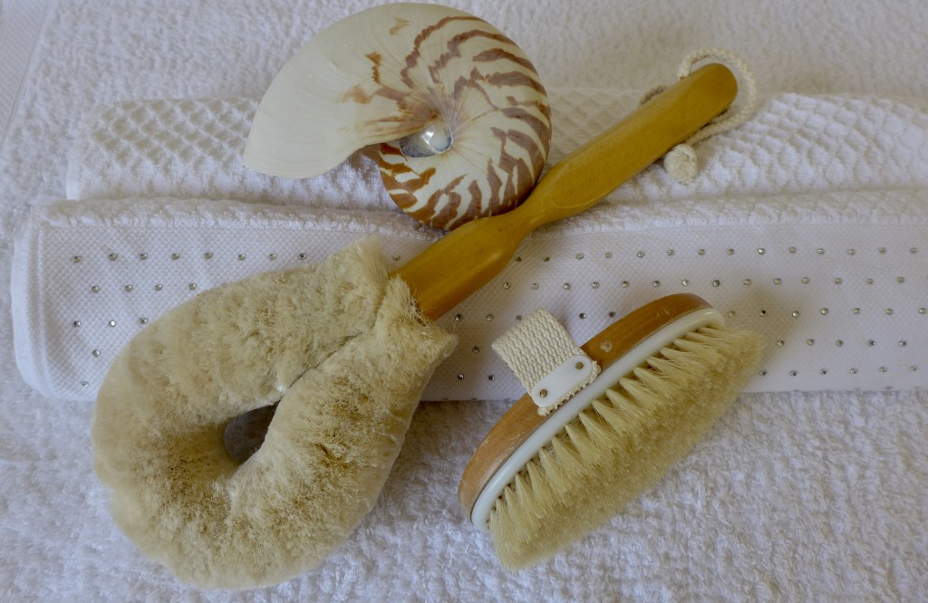 Body brushes.  Photograph:  GRACIE